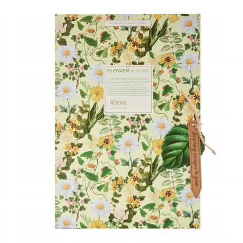 Daisy Garland - RHS Flower Blooms Scented Drawer Liners Heathcote & Ivory (5 x Sheets)